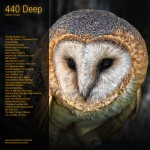 440Deep_owl