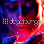 www.dogglounge.com