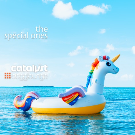 catalyst: dl142 – the special ones