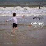 catalyst_2021-01-22_dl144-wing-it-472